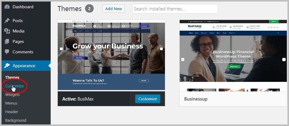 Install WordPress Theme - Customize