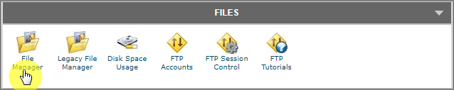 cPanel File Manager Option